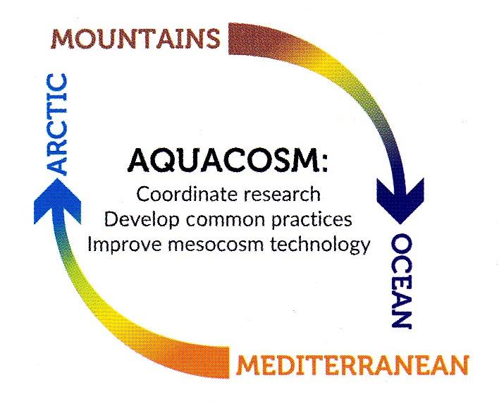 aquacosm-loop